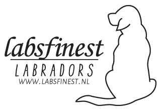 logo labsfinest